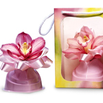 Pastel Orchid Gift Bags
