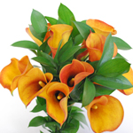 Orange Mini Calla Table Arrangements