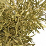 Gold Feather Leaf Filler Greens