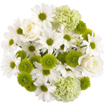 Green Cream Wedding Centerpieces