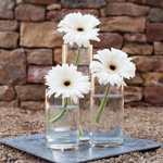 Simple Gerbera Centerpiece Trio