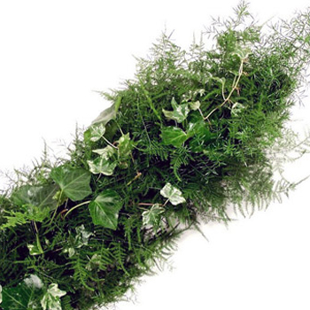 Fern and Ivy Greens Garland